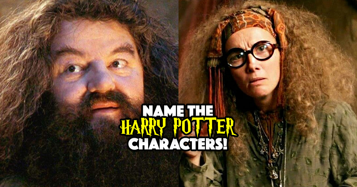 We Bet You Can't Remember All These Harry Potter Characters