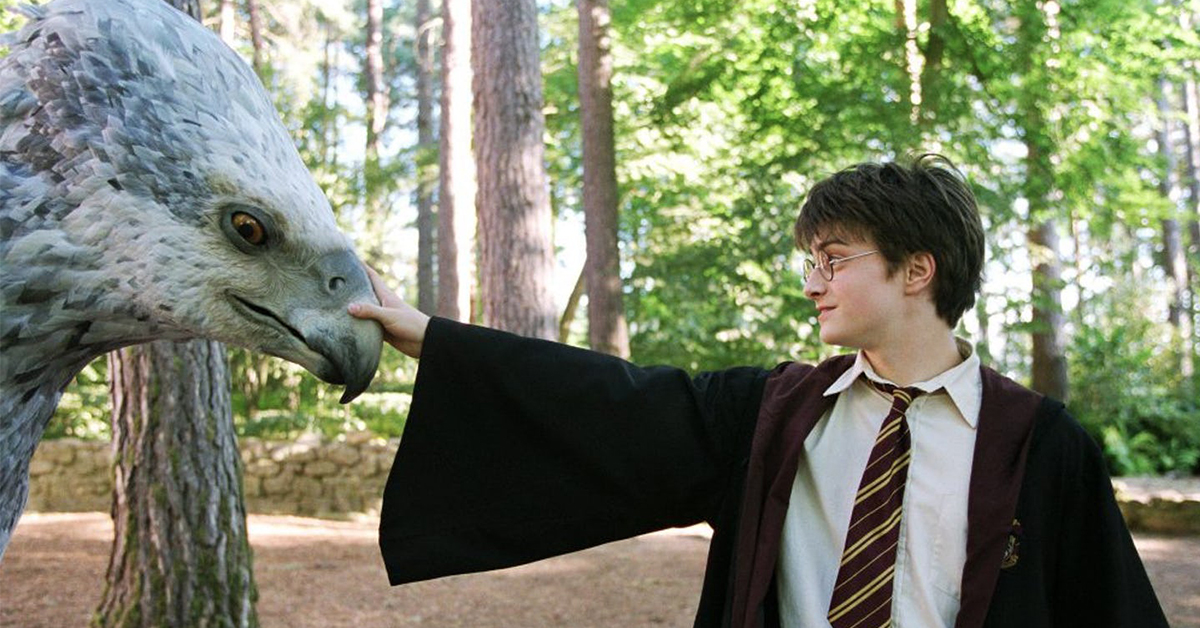 Spend A Day At Hogwarts And We'll Reveal Your Animagus | TheQuiz
